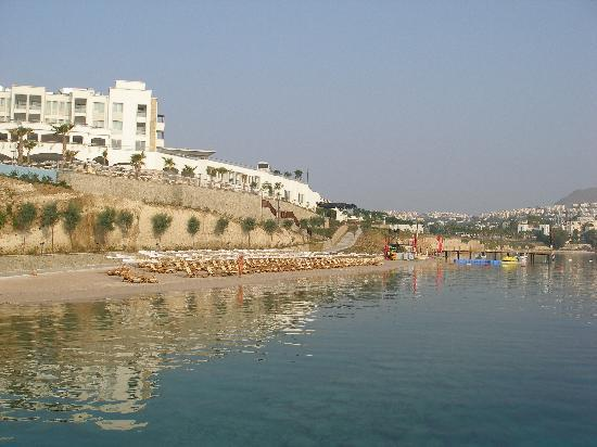 Xanadu Island Hotel: Early morning on the Beach