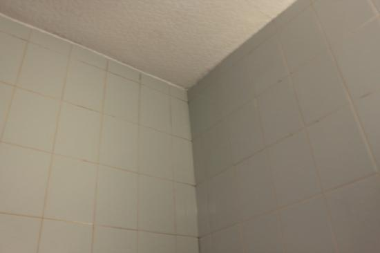 Crooklands Hotel: dirty coloured brown grout