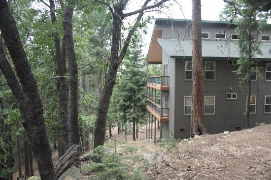 Yosemite Peregrine Lodging: The lodge in all its hillside glory.