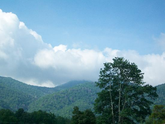 Maggie Valley Creekside Lodge: mountains outside our front door
