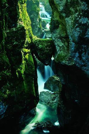 Bear&#39;s head in Tolmin Gorges