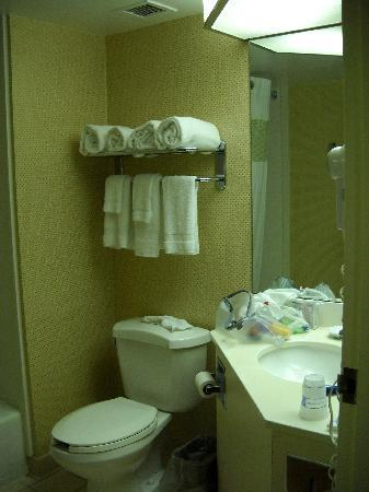 Hampton Inn St. Joseph I-94: spacious bathroom, good lighting