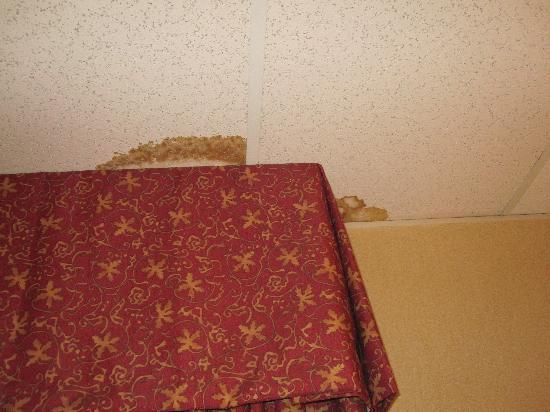 Comfort Inn Ballston: Stained ceiling