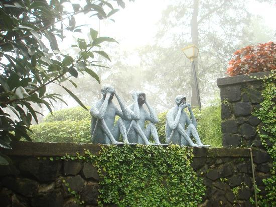 Manas Resort: Gandhiji&#39;s three monkeys