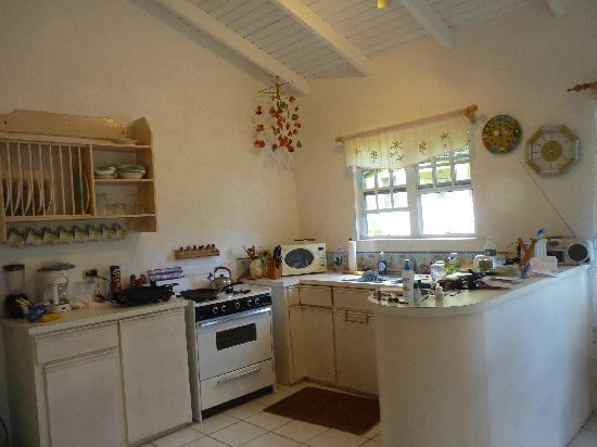 Guava Road Apartments: Our Kitchen!