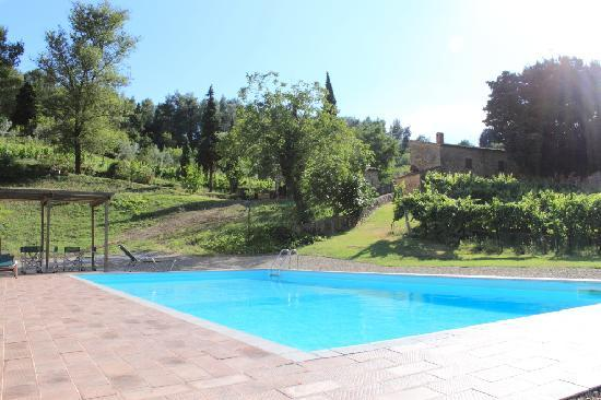 Agriturismo Fonte Martino: The pool