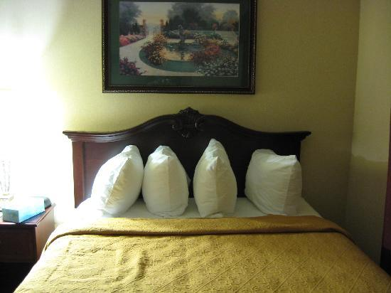 Quality Inn & Suites: queen bed 1 note the unusual pillow placement