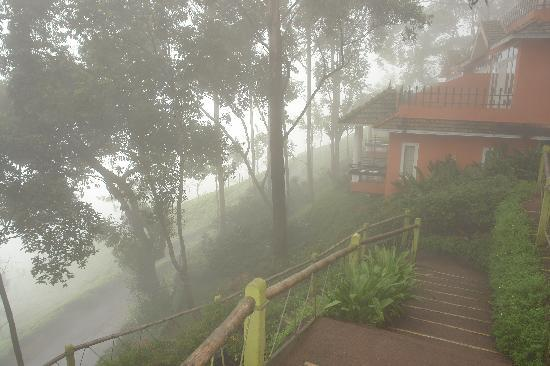Tea Valley Resort: Mornings and Evenings in Clouds
