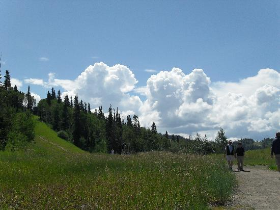 Countryside, Steamboat Springs, CO