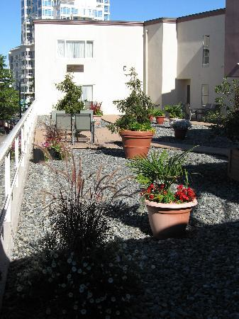 BEST WESTERN PLUS Dorchester Hotel: A rooftop garden/patio