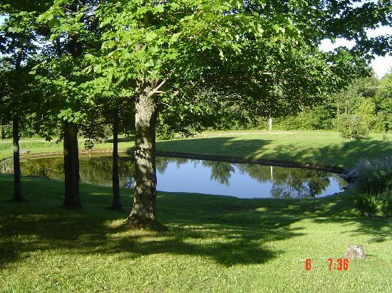 La Bergerie B&B: The tranquil pond