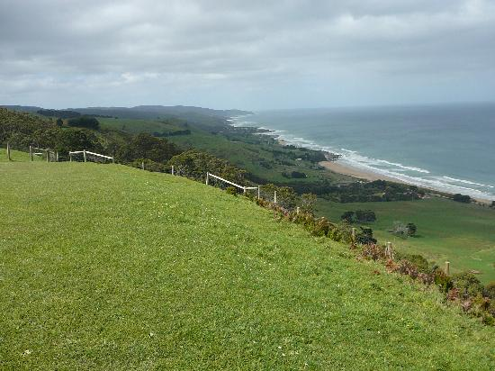 Apollo Bay, Australia: View along Great Ocean Road from Mariner's Lookout