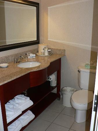 Wingate by Wyndham Nashville Airport TN: Bathroom