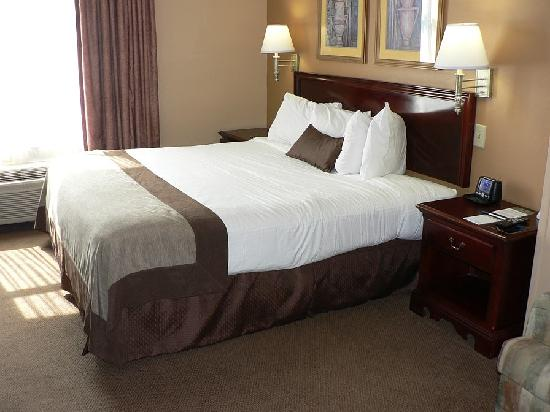 Wingate by Wyndham Nashville Airport TN: King Bed