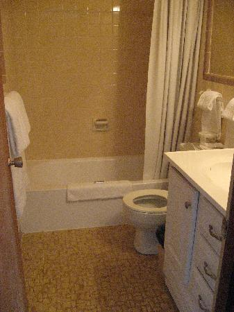 Riverside Motor Lodge: Bathroom....newer tile and vanity