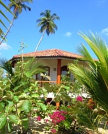 ‪Patini Bungalows - Beach Garden‬