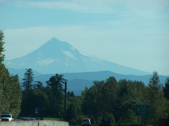 Lakecliff Bed and Breakfast: Mt Hood