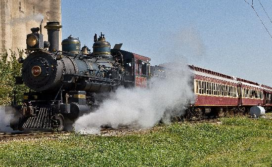 Step back in time as you hop aboard the Grapevine Vintage Railroad for an excursion from Grapevi