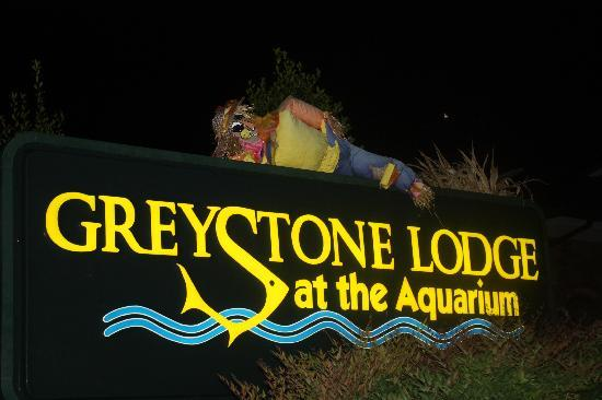 Greystone Lodge at the Aquarium: Greystone