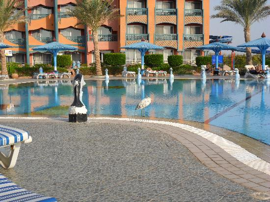Dreams Beach Marsa Alam: pool area