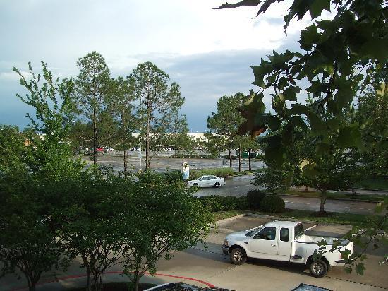Homewood Suites by Hilton Houston - Willowbrook Mall: View from the window