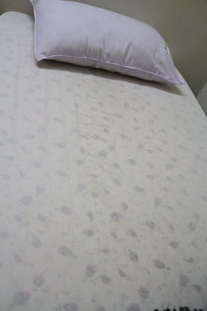 Lake Ghat Guest House