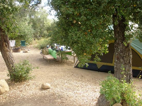 Second Time Camping Was Great - Review of Julian, CA ...