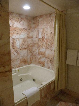 jacuzzi tub and shower submited images pic2fly