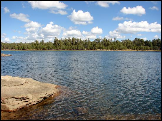 Willow springs lake picture of payson arizona tripadvisor for The lodge at willow creek