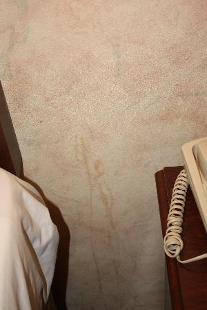 Red Roof Inn Staunton: Stains on wall