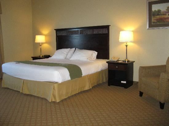 ‪‪Holiday Inn Express Hendersonville Flat Rock‬: View of the Room‬
