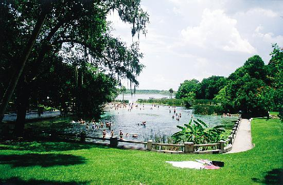 Floryda: Salt Springs, Ocala National Forest