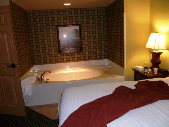 huge seperate bedroom with whirlpool tube picture of
