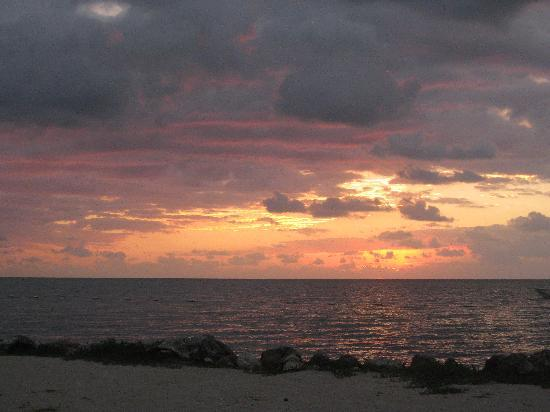 Islander Resort: Islamorada Sunrise