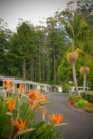 Photo of Abilene Garden Motel Kerikeri