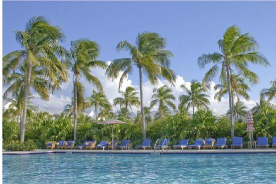 Indigo Reef Marina Homes Resort: Beautiful pool area.