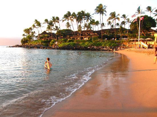 Napili Kai Beach Resort: Beach with Resort in background