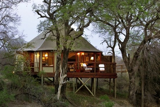 ‪Hamiltons Tented Safari Camp‬