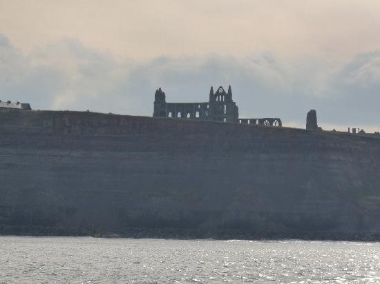 Victoria's Bed & Breakfast: Whitby from the sea