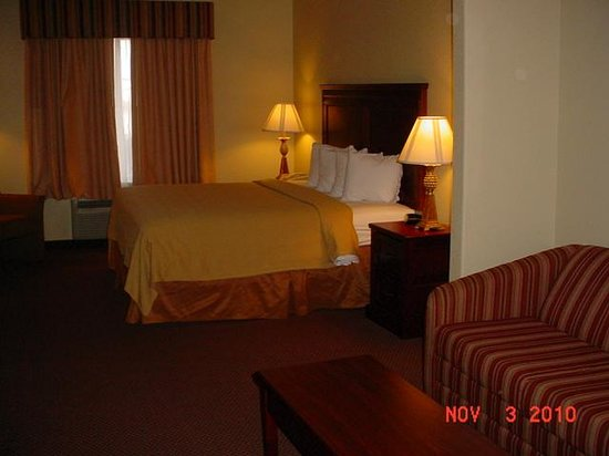 Quality Inn &amp; Suites: Typical Room