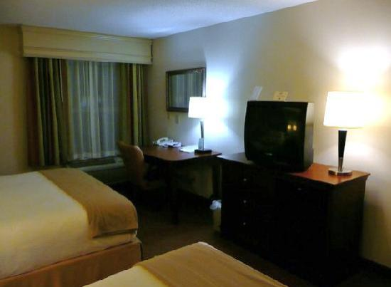 Holiday Inn Express Asheville - Biltmore Square Mall: Zimmer