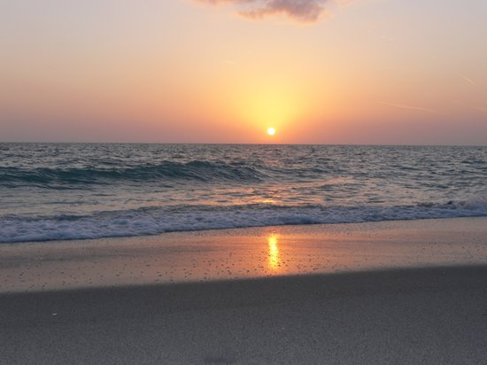 Englewood Beach Vacation Rentals Pet Friendly