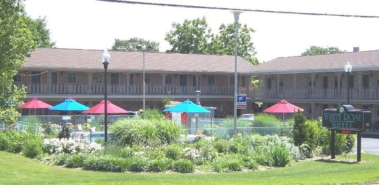 Photo of White Rose Motel Hershey