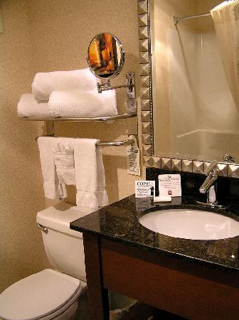 Beautiful towel display - Picture of Clarion Hotel Portland ...
