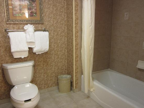 Homewood Suites by Hilton - Asheville: Tub/Toilet
