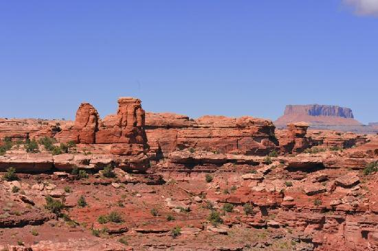 One of Many Beautiful Views at Canyonlands National Park