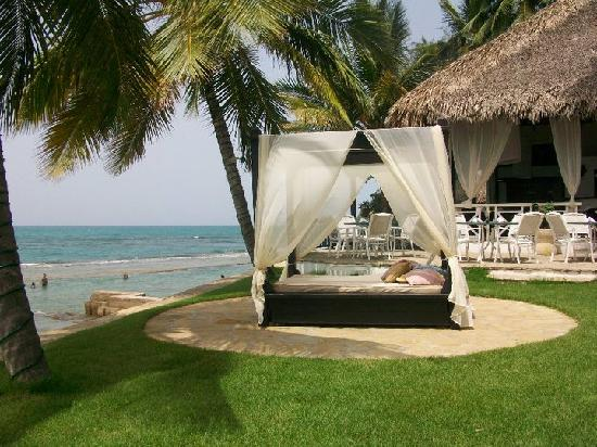 Velero Beach Resort: 1 of 6 Cabanas @ the Velero! Spent alot of time here!
