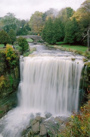 Hamilton, Canada: Webster&#39;s Falls