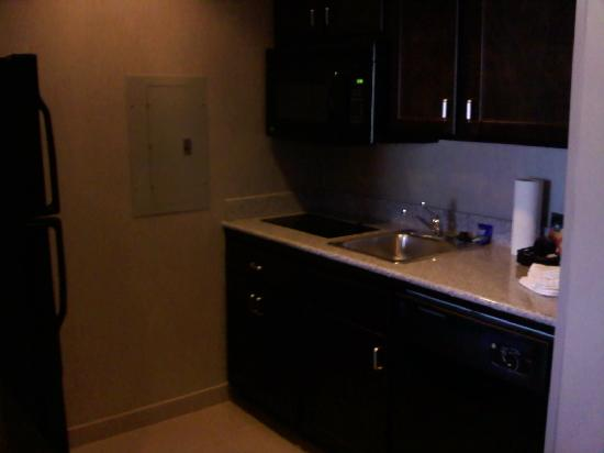 Homewood Suites by Hilton Leesburg: Kitchenette in our room.