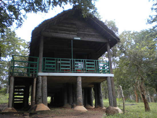 ‪K Gudi Wilderness Camp‬